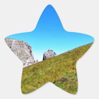 Yin Yang de la naturaleza Pegatina En Forma De Estrella