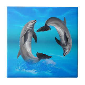 Yin Yang Dolphins Tile