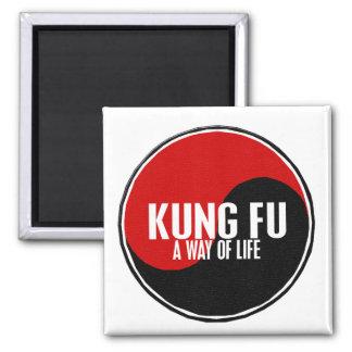 Yin Yang Kung Fu 1 Imanes De Nevera