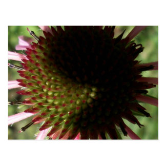 Yin Yang Print -Abstract Flowers Series 3 Postcard