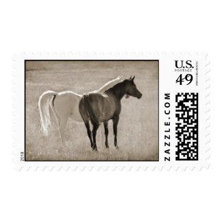 Yin Yang (Sephia) Postage Stamp
