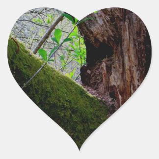 Yin Yang Tree Heart Sticker