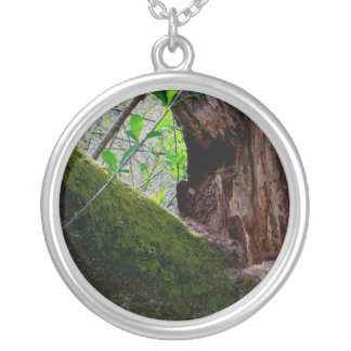 Yin Yang Tree Round Pendant Necklace