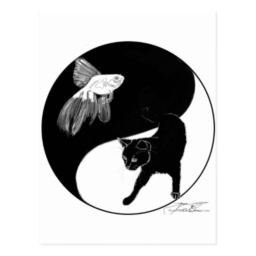 YinYang Fish and Cat - Black and White Postcard