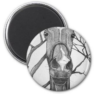 ¡Yo! Arte del caballo Imán Redondo 5 Cm