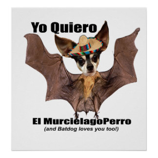 Yo quiero el murcielago perro - I love the Batdog Poster