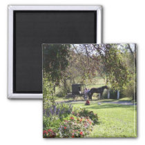 """Yoder's Amish Farm"" Magnet"