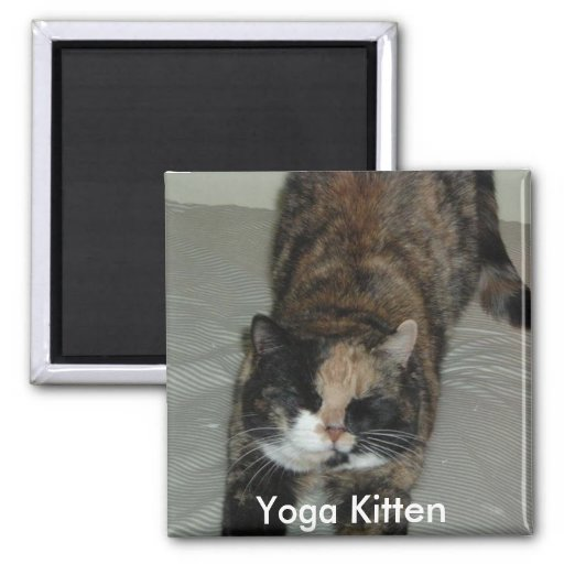Yoga Calico Kitty Cat 2 Inch Square Magnet
