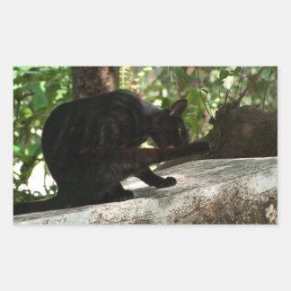 Yoga del gato negro de BYOG Rectangular Pegatinas