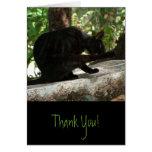 Yoga del gato negro de BYOG Tarjeta De Felicitación