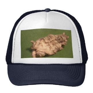 Yoga diaria del gatito del chica de Smoochie Gorros Bordados