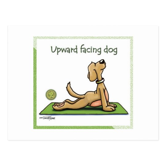 Yoga Dog - Upward Facing Dog Pose Postcard