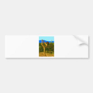 Yoga Freedom Bumper Sticker