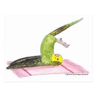 Yoga Parakeet Plow pose Postcard