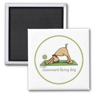 Yoga - perro boca abajo imanes para frigoríficos