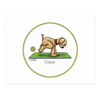 Yoga - The Crane Pose Post Card