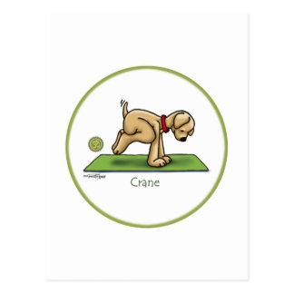 Yoga - The Crane Pose Postcard
