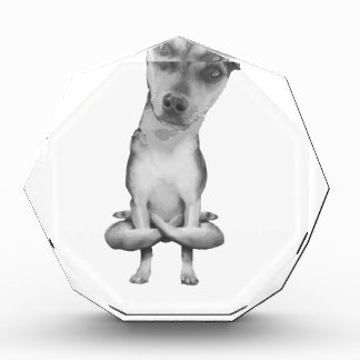 Yogi Doggie cute dog in yoga asana, cool funny Award