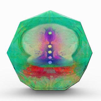 yogi in multi colors award