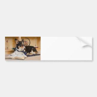 Yogi the Science Dog Bumper Sticker