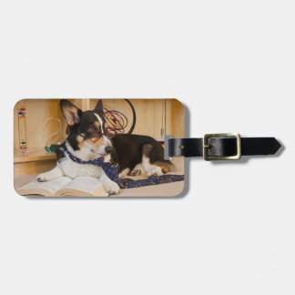 Yogi the Science Dog Luggage Tag