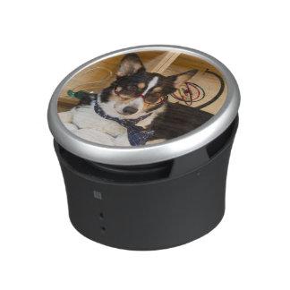 Yogi the Science Dog Speaker