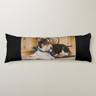 Yogui el perro de la ciencia almohada