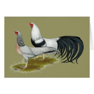 Yokohama Silver Duckwing Pair Card