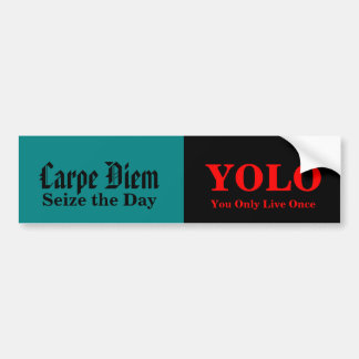 Yolo Bumper Sticker