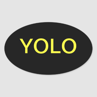 YOLO You only live once Oval Stickers