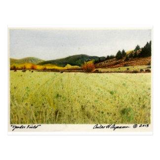 Yonder Field Postcard