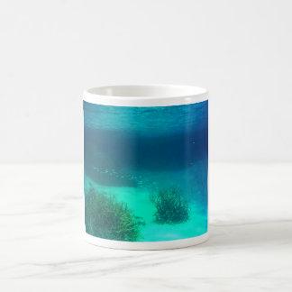Yonge reef mugs