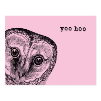 Yoo Hoo Owl Greeting in Pink Postcard