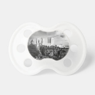 York Minster in the Sun Pacifier