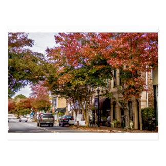 york south carolina white rose city historic distr postcard