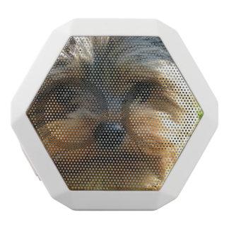 York Terrier Dog White Boombot Rex Bluetooth Speaker