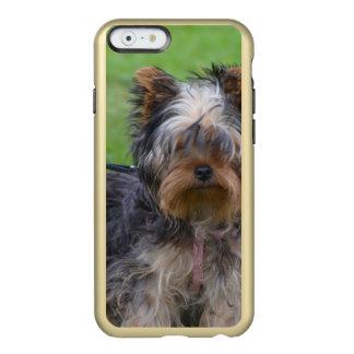 York Terrier Dog Incipio Feather® Shine iPhone 6 Case