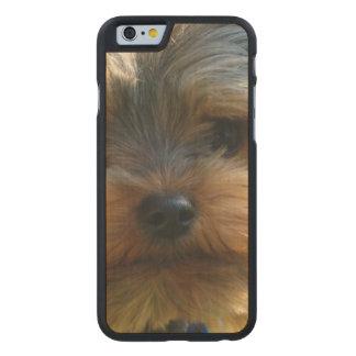 York Terrier Dog Carved® Maple iPhone 6 Slim Case