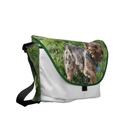 York Terrier Messenger Bag