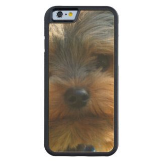 York Terrier Carved® Maple iPhone 6 Bumper Case