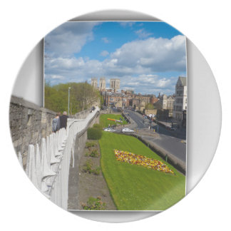 York walls minster party plate