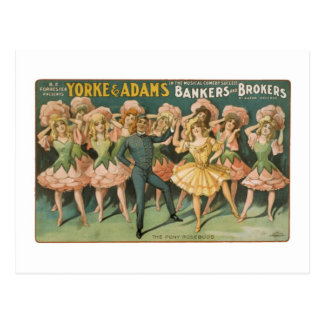 Yorke & Adams Bakers and Brokers The Pony Rosebuds Postcards