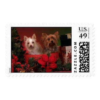 Yorke Christmas Stamps