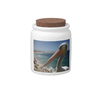 Yorke_Peninsula,_S.A,_Cheeky_Pelican, Candy Jars