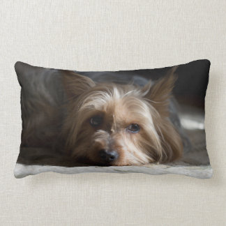 yorkhire/almohada del lumbar de Terrier sedoso Cojín Lumbar