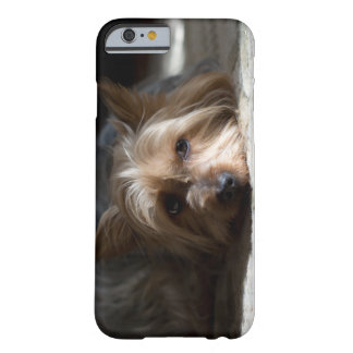 Yorkhire / Silky Terrier phone and iPad cases