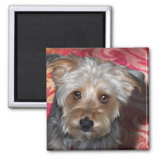 Yorkie 2 Inch Square Magnet