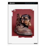 Yorkie and boot decal for iPad 3