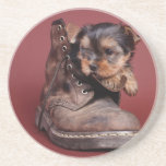 Yorkie and boot drink coaster