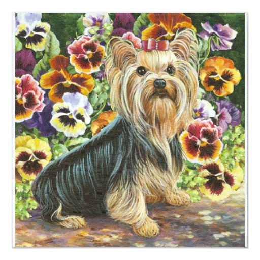 Yorkie and Pansy Garden Card Invitation